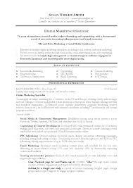Media Sales Resume Media Planner Resume Example Media Sales