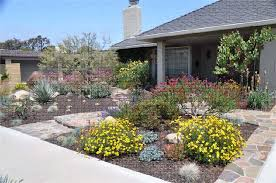 Small Picture drought tolerant landscaping ideas california San Diego Drought