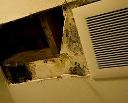 bathroom ceiling mold removal. Fabulous No Comments With Mold Bathroom Ceiling Removal