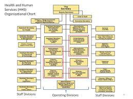 The Federal Executive Bureaucratic Agencies In Health Care