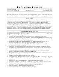 Cover Letter Vp Sales Resume Vp Sales Resume Objective Senior Vp