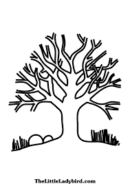 Small Picture Tree With No Leaves Coloring Page Free Download