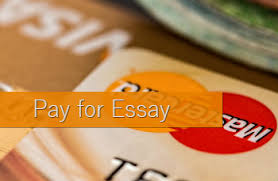 pay for essay online there is a simple truthful statement that we all seem to forget you always have to pay for a good service if someone offers you their services for