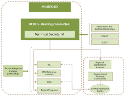 Organizational Chart Enchanting Organizational Chart Of Management Institutions For The REDD