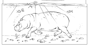 Small Picture Hippo coloring pages for kids