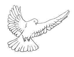 Inspirational Dove Coloring Page 81 On Free Coloring Kids with ...