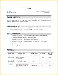 resume samples career objective  resume for study