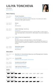 Project Assistant Resume Samples Visualcv Resume Samples Database