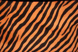 Animal Prints Animal Print Images Reverse Search
