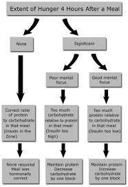 Hormonal Adjustment Diagnostic Chart Dr Sears Zone