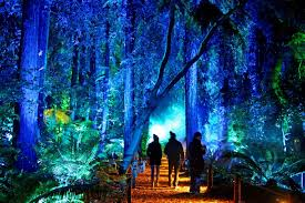 Enchanted Forest Of Lights Descanso Enchanted Forest Of Light Tickets Descanso Gardens Guild