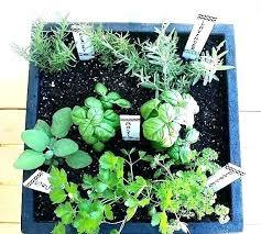 garden patch grow box instructions rock flowers perennials p