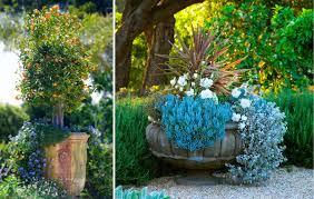 Small Picture Garden Design Garden Design with Santa Festyle container garden