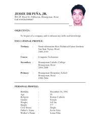 20 Job Application Resume