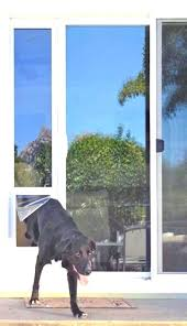doggie door for slider spectacular glass slider door astonishing door sliding glass door insert for interior