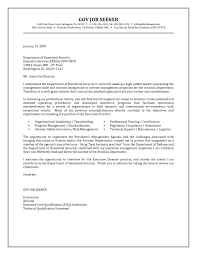 Government Resume Cover Letter Examples What Makes Good