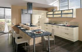 ... Low Cost Kitchen Cabinets Splendid Ideas 8 Unfinished ...