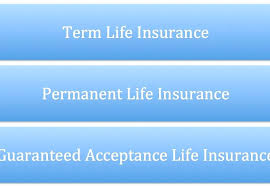 Aarp Term Life Insurance Quotes Aarp Life Insurance Quote Also A A A Next A Whole Life Insurance 54