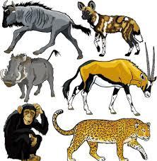 wild animals clipart. Fine Animals Vector Set Of Wild Animals Design Graphic In Wild Animals Clipart D