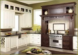 Pre Built Kitchen Cabinets Fascinating Prefab Kitchen Cabinets Within Prefab Kitchen Cabinets