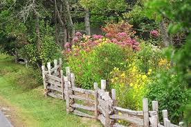 Small Picture Captivating Cottage Garden Ideas Uk 57 In Home Design Ideas With