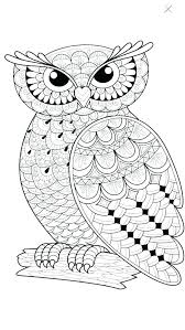 great horned owl coloring page great horned owl coloring page owl great horned owl coloring page printable baby owl coloring