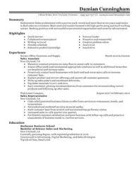 Sales Resume Template Microsoft Word