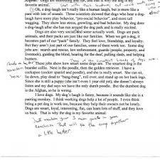 high school memories essay gcse utility of sources doc jpg a high school memories essay school memories essay writing examples for high school sample