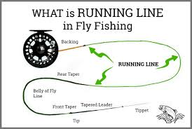 Fly Rod Line Weight Chart What Is Running Line In Fly Fishing Is It Different Than