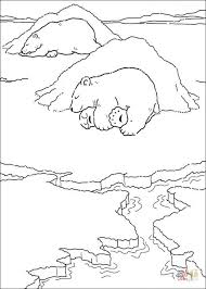 Small Picture Mommy Polar Bear and Daddy Polar Bear coloring page Free