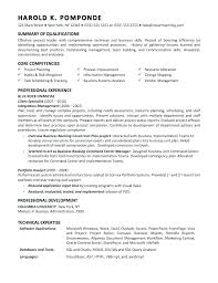 System Analyst Resume Sample Business Systems Analyst Resume