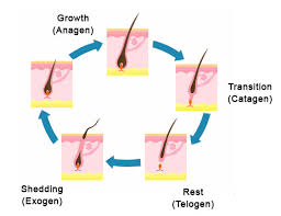 how it works sunetics lasers
