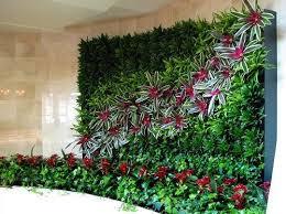 Small Picture Lovable Green Wall Vertical Garden Diy How To Making Of Patrick