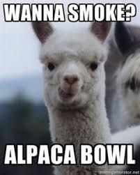 alpaca-bowl-weed-meme.jpg via Relatably.com