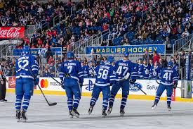 2018 19 Toronto Marlies A Look At The Roster Ahead Of The