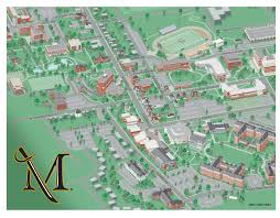 city  college campus map illustration  design