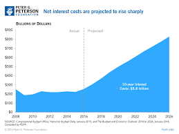 Interest On National Debt Chart Chart Of The Week Net Interest Costs On National Debt To Rise
