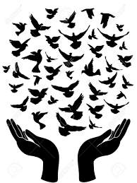 """Képtalálat a következőre: """"pigeon peace"""""""