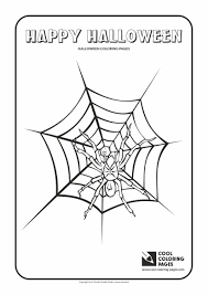 Small Picture Coloring Pages Animals Spider Coloring Page For Kids Image