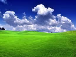 Green Grass Blue Sky Green grass blue skyjpeg Green Grass Blue Sky