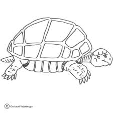 Small Picture Slow Turtle coloring page Free Printable Coloring Pages