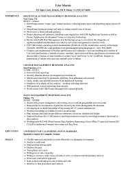 Web Analyst Resume Sample Management Business Analyst Resume Samples Velvet Jobs 21