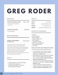 Combination Resume Format 2017. Professional Medical Resume Examples ...