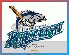 10 Best Bridgeport Bluefish Images Bridgeport Bluefish