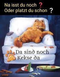 Pin Von Barbara Auf Guten Morgen Witzige Bilder Sprüche Stress