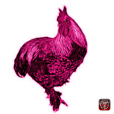 Pink teenage pink meets the rooster