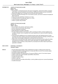 Manager Resume Sample Assistant Bank Manager Resume Samples Velvet Jobs