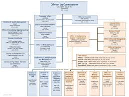 New York State Office Of Mental Health Organization Chart