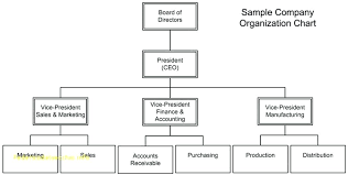 Sample Organizational Chart In Excel Microsoft Company Organization Chart Applynow Info