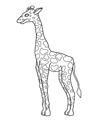 Printable Coloring Pages coloring page giraffe : 3 Outstanding Giraffe Coloring Pages | ngbasic.com